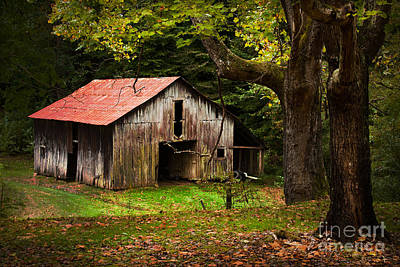 Kentucky Barn Original by Lena Auxier
