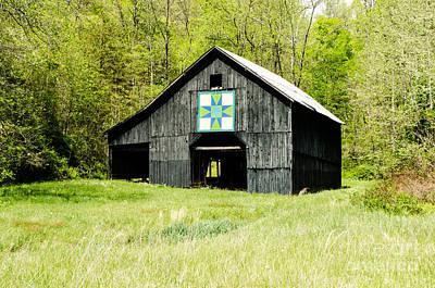 Kentucky Barn Quilt - Darting Minnows Art Print by Mary Carol Story