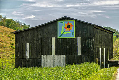 Kentucky Barn Quilt - Flower Of Friendship Art Print by Mary Carol Story