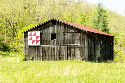 Kentucky Barn Quilt - Flying Geese Art Print by Mary Carol Story
