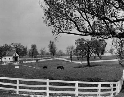 Kentucky Bluegrass Horse Racing Farm Art Print by Retro Images Archive