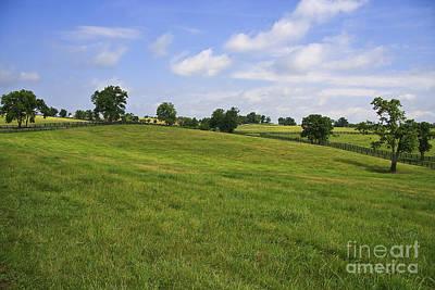 Photograph - Kentucky Bluegrass by Jill Lang
