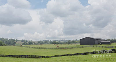 Photograph - Kentucky Farm by Kay Pickens