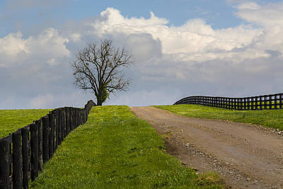 Kentucky Horse Farm Road Art Print