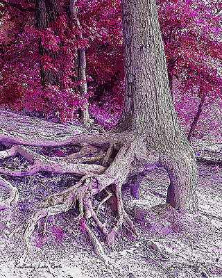 Photograph - Kentucky Lake Roots  by Lee Owenby