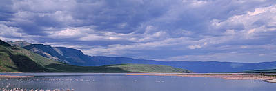 Of Birds Photograph - Kenya, Lake Bogoria, Panoramic View by Panoramic Images