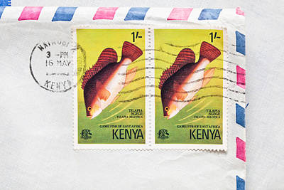 Kenya Stamps Print by Tom Gowanlock