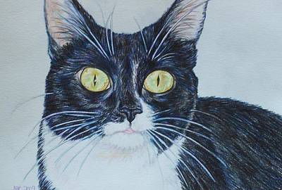 Drawing - Kenzie by Beth Clark-McDonal