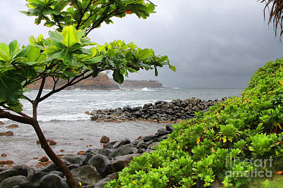 Photograph - Keokea Bay Big Island Hawaii By Diana Sainz by Diana Raquel Sainz