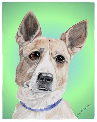 Dog Rescue Mixed Media - Kermit Humane Society Sweetie by Dave Anderson