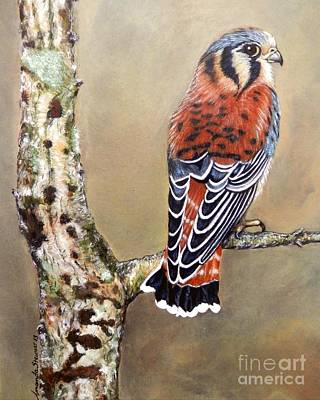Painting - Kestrel by Amanda Hukill