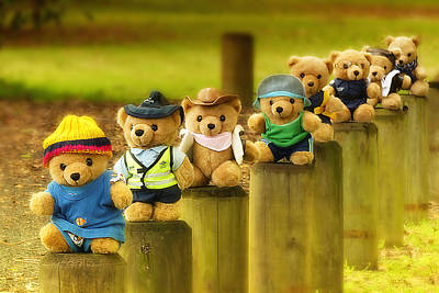 Photograph - Kevs Teddys 02 by Kevin Chippindall