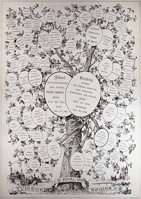 Key To Genealogical Tree, Showing The Descendants Of Her Majesty Queen Victoria 1819-1901, From The Art Print