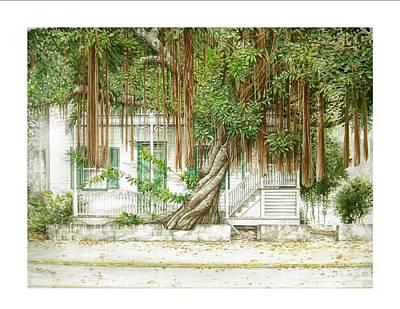 Key West Banyan Art Print