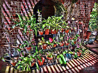 Key West Garden Club Pots Art Print by Joan  Minchak