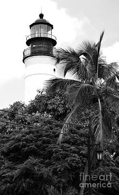 Photograph - Key West Lighthouse Above Palm And Mimosa Trees Florida Black And White by Shawn O'Brien