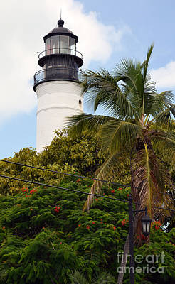 Photograph - Key West Lighthouse Above Palm And Mimosa Trees Florida by Shawn O'Brien