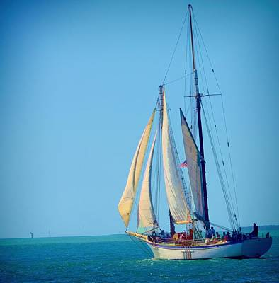 Art Print featuring the photograph Key West Sailing by Pamela Blizzard