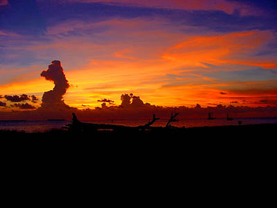 Photograph - Key West Sun Set by Iconic Images Art Gallery David Pucciarelli