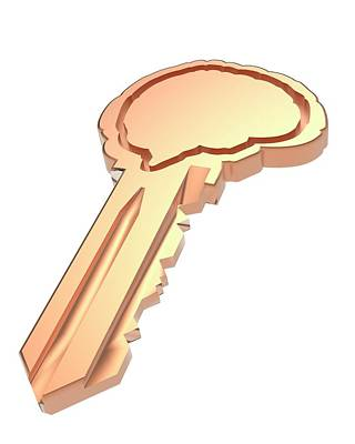 Human Brain Photograph - Key With Brain Shape by Alfred Pasieka