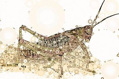 Grasshopper Digital Art - Kicking Up Dust by Steven Boland