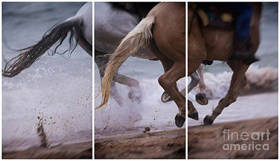 Photograph - Kicking Up The Sand by Mary Lou Chmura