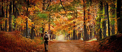 Kid With Backpack Walking In Fall Colors Art Print by Panoramic Images