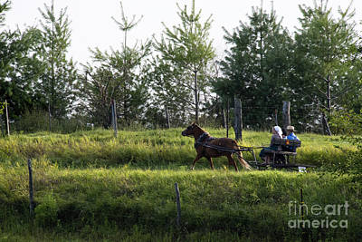 Amish Photograph - Kids On A Buggy Ride by David Arment
