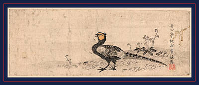 Pheasant Drawing - Kiji, Pheasant. Print Shows A Pheasant Facing Left by Japanese School