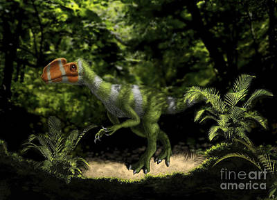 Kileskus Aristotocus Of The Middle Art Print by Yuriy Priymak