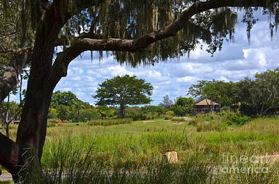 Photograph - Kilimanjaro Safari by Carol  Bradley
