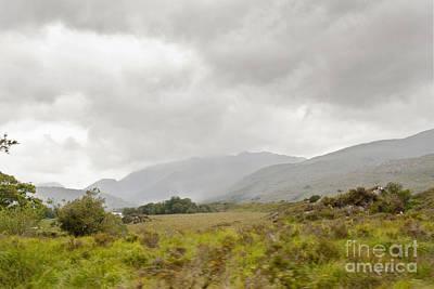 Digital Art - Killarney National Park by Danielle Summa