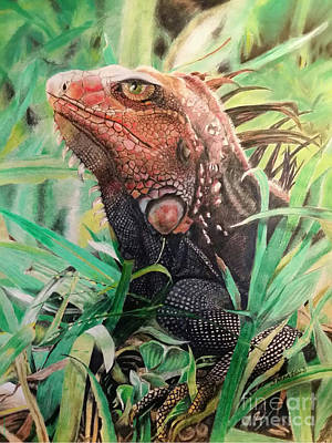 Iguana Drawing - Killer by John Martinez