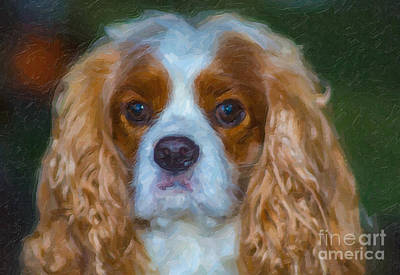 Digital Art - King Charles Spaniel by Dale Powell