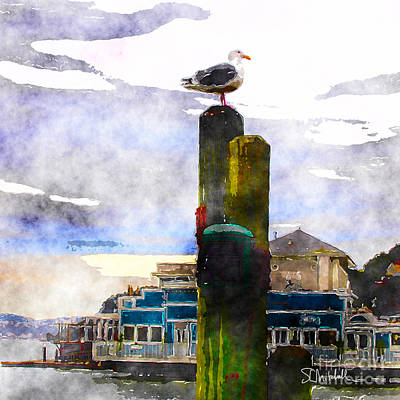 Painting - Sausolito Gull by Stephen Mitchell