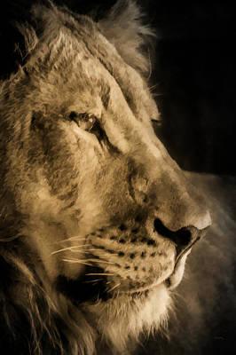 Male Lion Digital Art - King Of Beasts by Ernie Echols