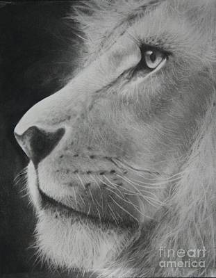 Drawing - King Of The Jungle by Adrian Pickett