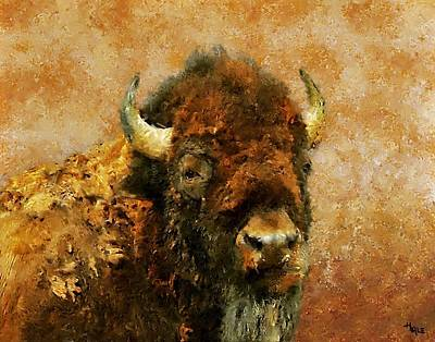 King Of The Plains Art Print by Roger D Hale
