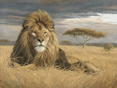 Africa Painting - King Of The Pride by Lucie Bilodeau