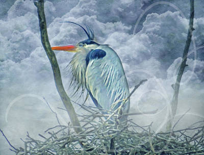 Heron Mixed Media - King Of The Sky by Georgiana Romanovna