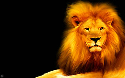 Lion Photograph - King's Portrait by Lourry Legarde