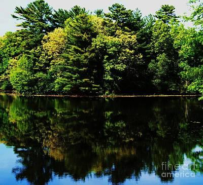 Kingsbury Pond In Summer Art Print by Marcus Dagan