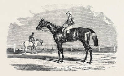 Kingston, The Winner Of The Goodwood Cup Art Print by English School