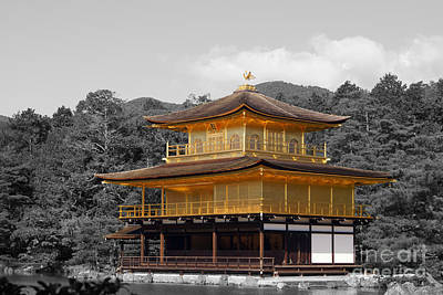 Kinkaku-ji Art Print by Cassandra Buckley