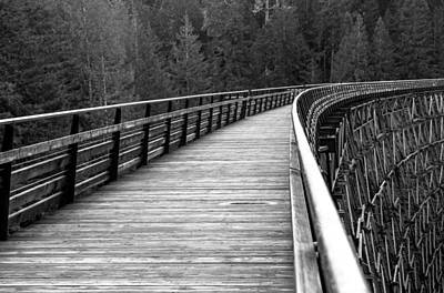 Kinsol Trestle Boardwalk  Art Print