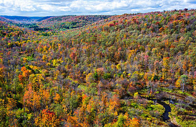 Kinzua Photograph - Kinzua Bridge Valley by Steve Harrington