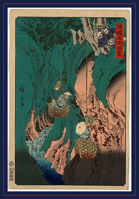 Mushroom Drawing - Kishu Kumano Iwatake Tori by Utagawa Hiroshige Also And? Hiroshige (1797-1858), Japanese
