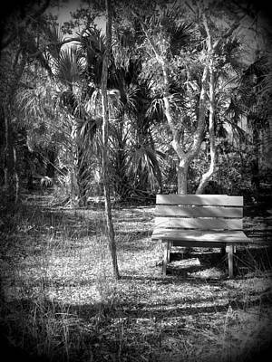 Photograph - Kissing Bench I by Sheri McLeroy