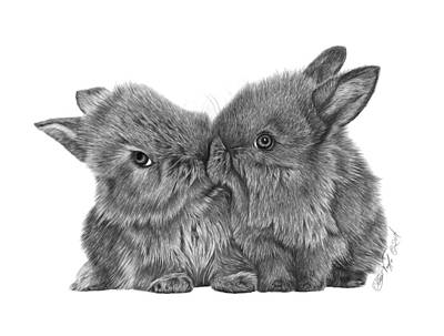 Drawing - Kissing Bunnies - 035 by Abbey Noelle