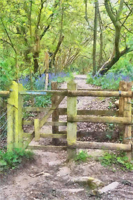 Woodlands Scene Mixed Media - Kissing Gate Watercolour by Roy Pedersen